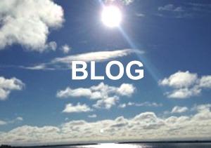 blog-300x211